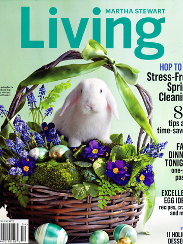 Martha Stewart Living<br>April 2014