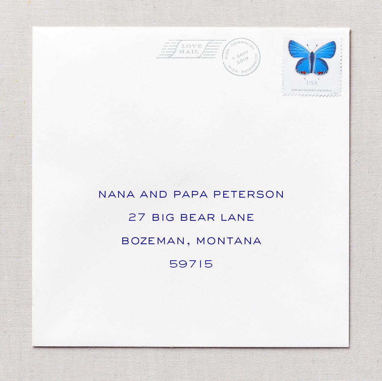 designed envelope