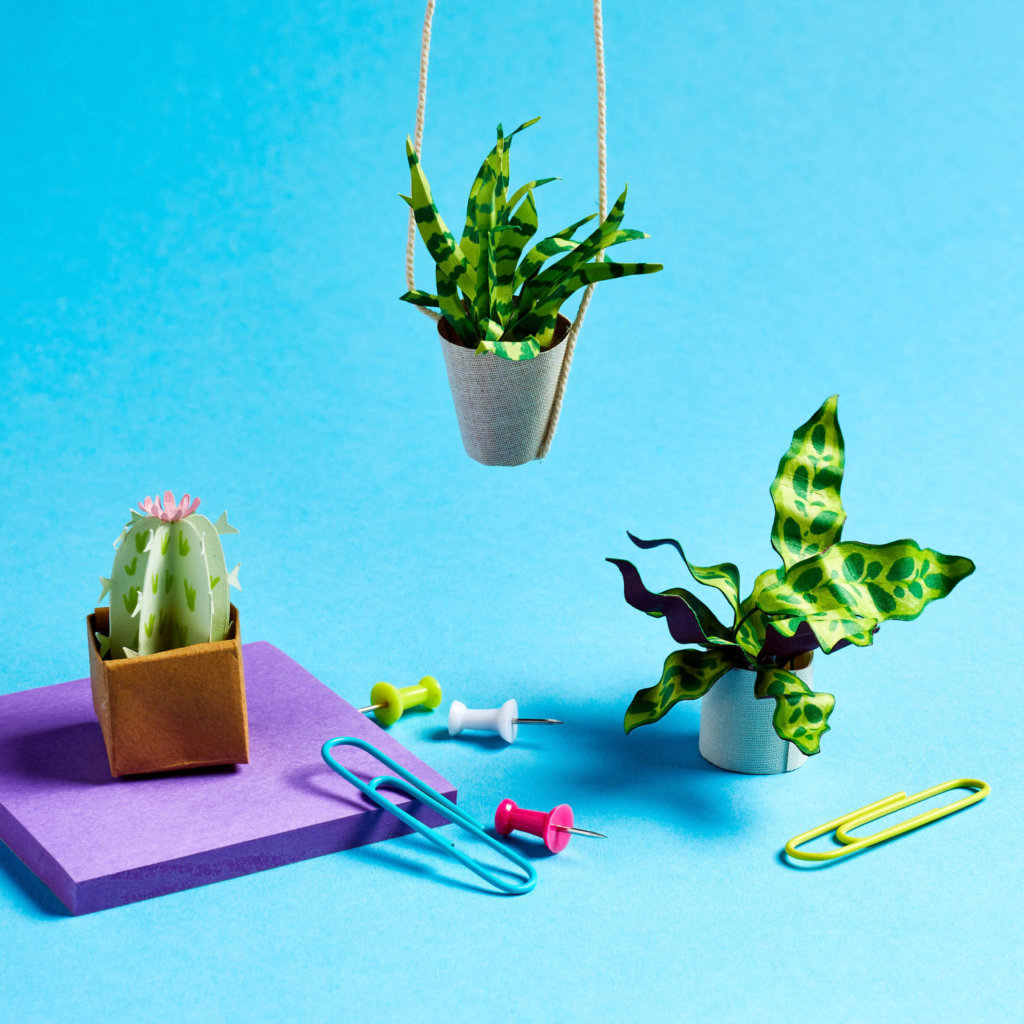 downloadable paper plants